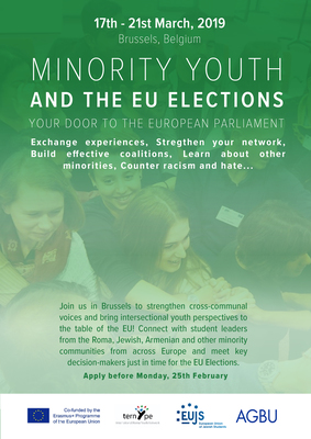 Minority Youth and the European Parliament elections in 2019